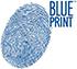 Blue Print Interieurfilter